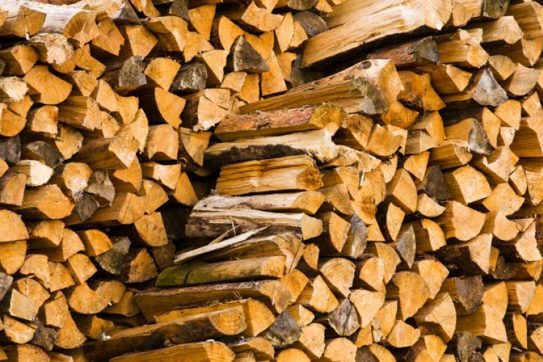 Какими дровами топить баню